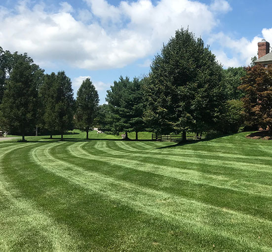 landscape companies northern virginia